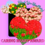 caringheartaward